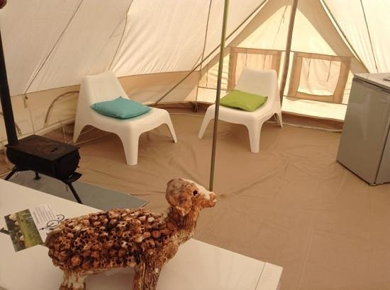 Glamping Ecochique: our sheep