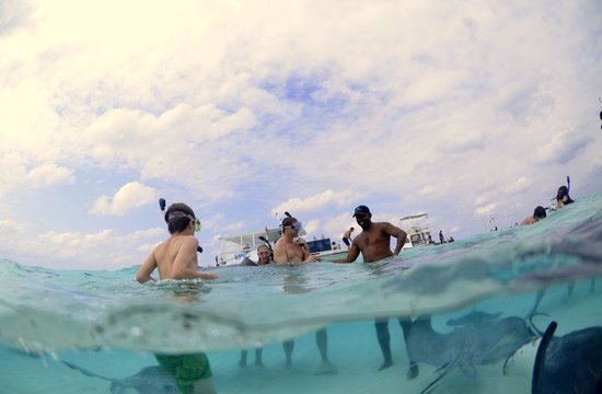 Cayman Private Charters: With new friends - stingrays
