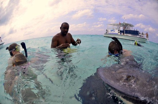 Cayman Private Charters: The coach with the kiddos