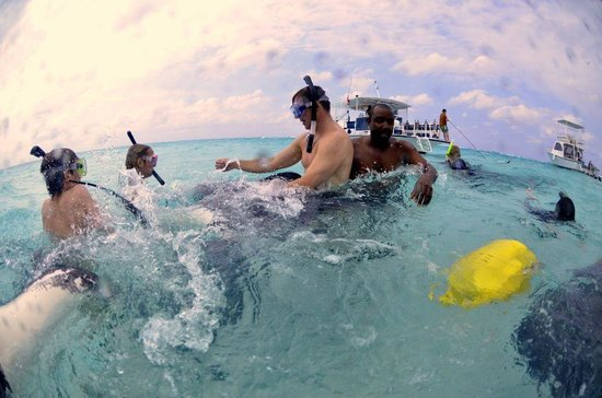 Cayman Private Charters: Some parental advise