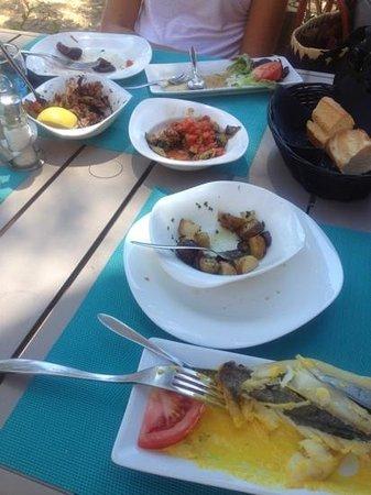 Le Pelagos : petits plats bien sympa