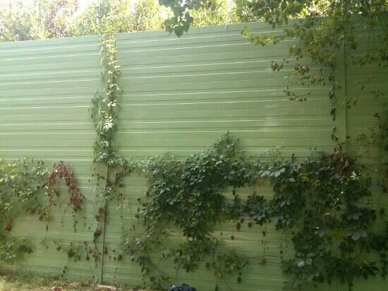Camping La Pineta: muro dal treno