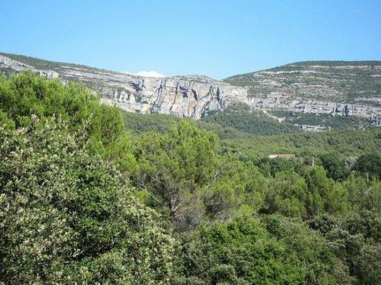 Madame Vacances Résidence Provence Country Club : Vue de la chambre et de la terrasse