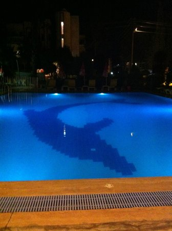 Albatros Apartments: The main pool looking from the bar