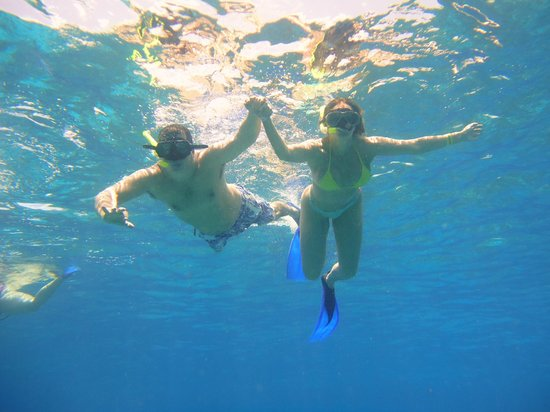 Cancun Vista : Mergulho em Cozumel, Cancun!!!!!! Imperdível