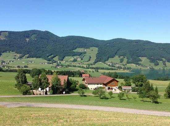 Pension Irlingerhof: a view outside the hotel