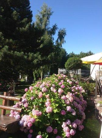 Pension Irlingerhof: the hotel garden