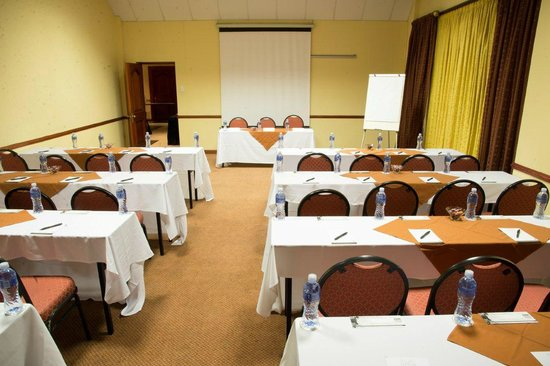 Premier Hotel King David: Conferencing