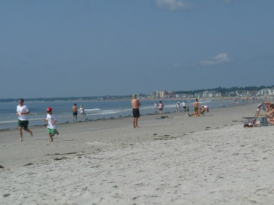 The Holiday House Inn: The beach at Pine point