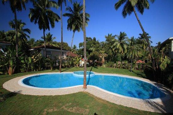 Win Hotel Goa Candolim Reviews Photos Rate Comparison Tripadvisor