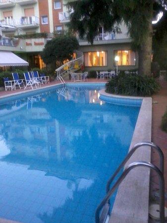 Hotel Bergamo: La piscina