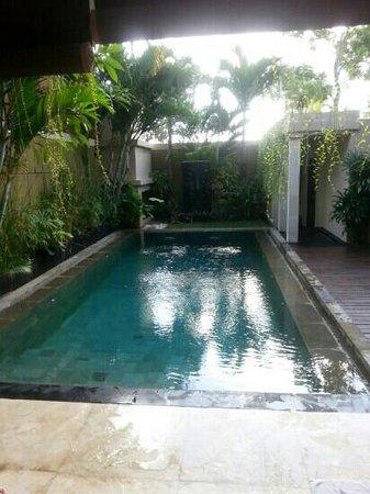 Villa Harmony: pool lovely