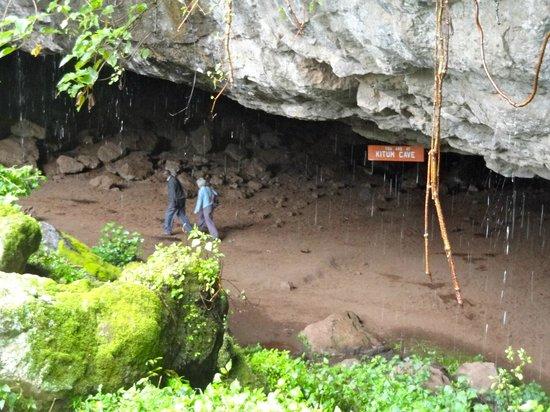 Mount Elgon National Park: Kitum Cave