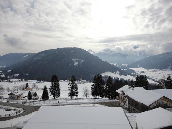 Hotel Alpen Tesitin: panorama dall'hotel