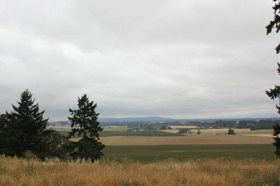 Soter Vineyards: Incredible Views