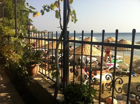 Yelkovan Ada Evi : Aba plajı