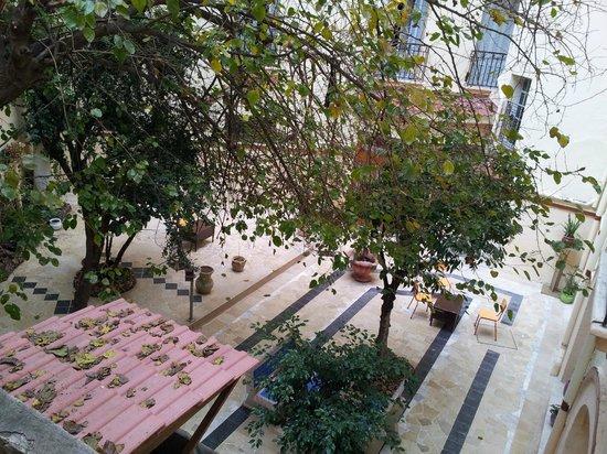 Grand Hotel de France: Splendid backyard