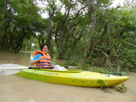 Unique Kayak Cambodia Day Tours: Kayaking through mangroves forest