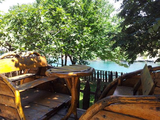 Kuce Rakica on Cijevna