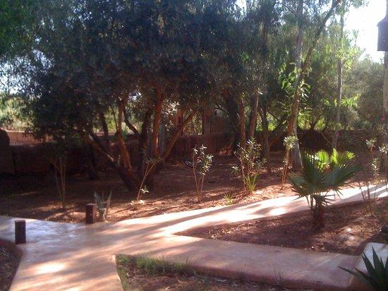Kasbah Tiwaline: jardins