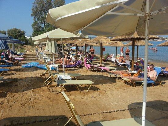 SunCity Hotel Studios: Golden Bay beach...beautiful sand and clear sea