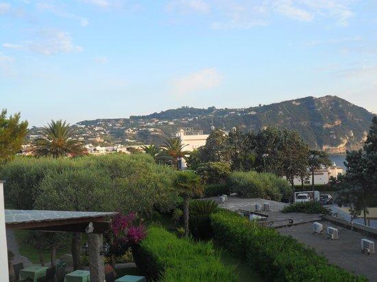 Hotel Ideal: Vista dal terrazzo della nostra camera