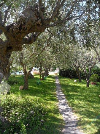 Hotel Ideal : in giardino
