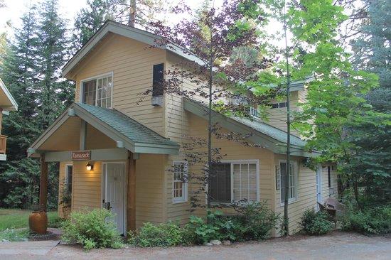 Tenaya Lodge at Yosemite: Cottage Room at Tenaya Lodge