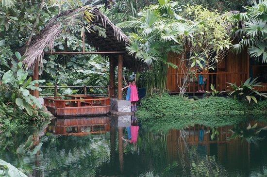 Mindo Lago: Cabanas
