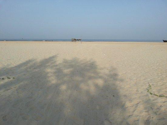 kenilworth beach resort and spa 5 Гоа