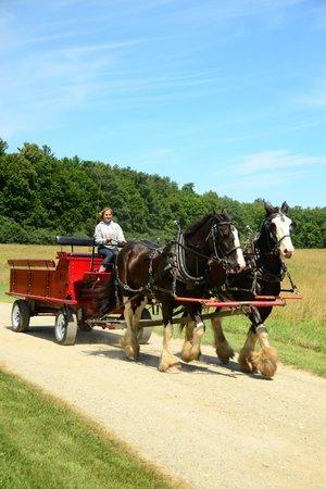 Shelburne Farms: Wonderful, simple, civilized farm life!