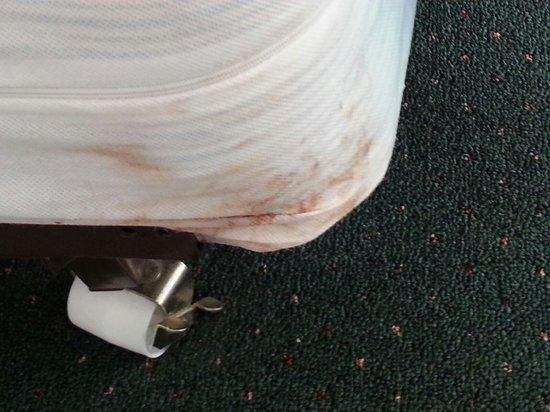 Sea Scape Inn: Disgusting bedsheet