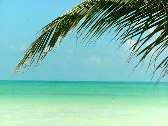 Beachfront La Palapa Hotel Adult Oriented : lazing around in the loungers paradise found