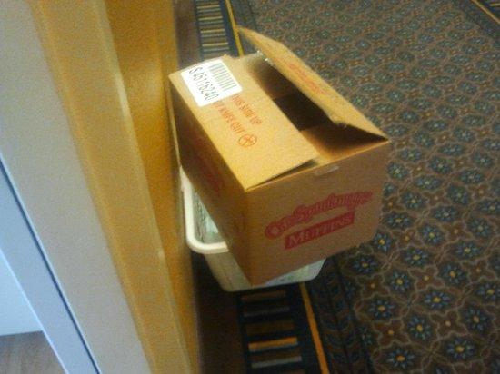 Hawthorn Suites by Wyndham Chicago Hoffman Estates: Garbage left in room when we arrived