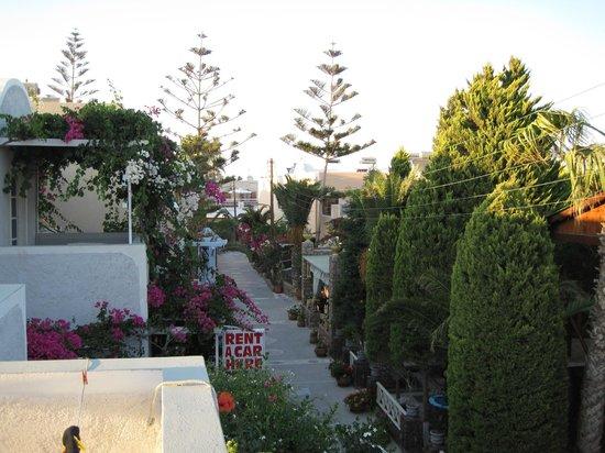 Polydefkis Apartments: udsigt fra altan