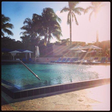 The Ritz-Carlton Coconut Grove, Miami: Pool area