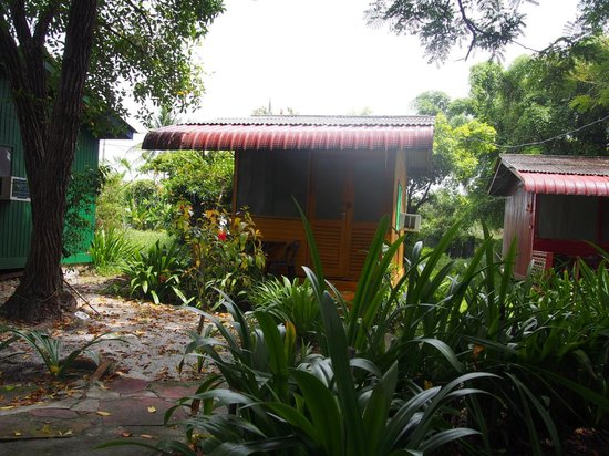 Shirin Homestay: My little room