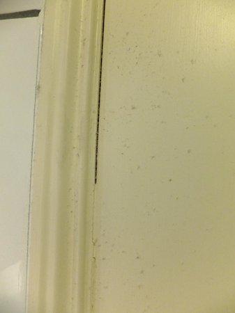 Premier Inn Maidstone (A26/Wateringbury) Hotel: dust motes in the bathroom - these do not appear overnight