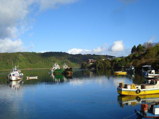 Cruce Andino Puerto Montt / Bariloche Day Tours: Puerto Mont.