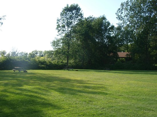 Holiday Harbor Resort: Field Sites, Covered Picnic Tables in Background