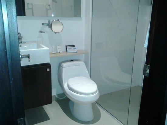 Atlantis Suites: Baño bonito y amplio, aunque el piso de la ducha es algo resbaloso (en porcelanato)