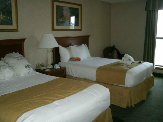 Centerstone Inn Doswell at Kings Dominion : Typical room