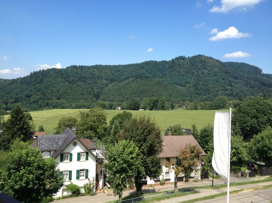 Hotel Behringers Traube: View from Bruhl Suite balcony