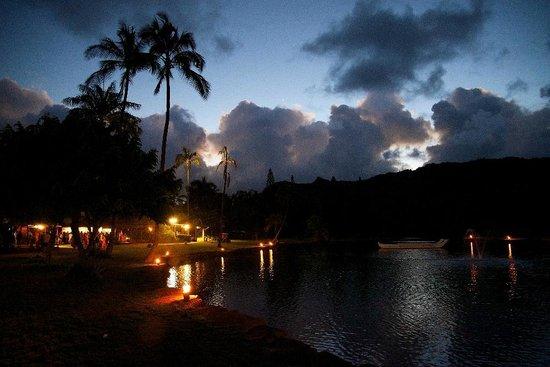 Smith Family Garden Luau: Night descends...