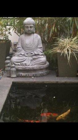 Maison Zen: Buddha&Koi
