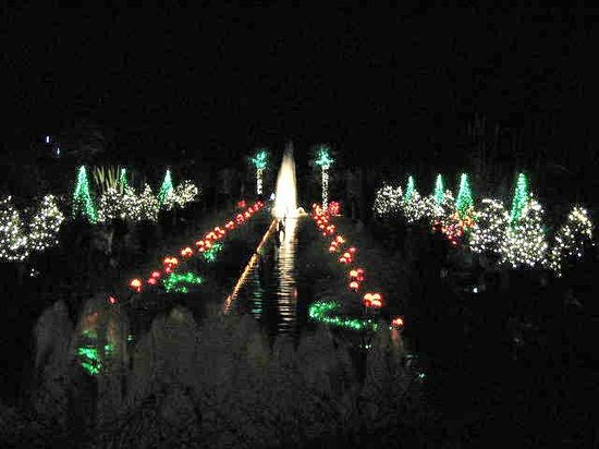 Daniel Stowe Botanical Garden: DSBG - holiday lights on on of several water features