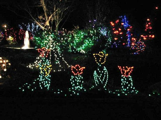 Dsbg holiday lights on the large lawn picture of - Daniel stowe botanical garden christmas ...
