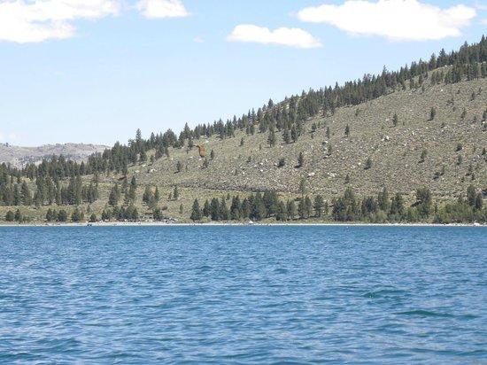 June Lake Marina: View towards swim beach of June Lake.