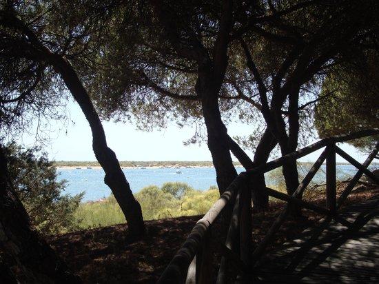 Hotel Nuevo Portil golf: sendero entre dunas