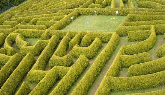 Kildare, Irlanda: Arial shot of the hedge maze